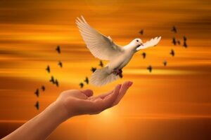 God as a Dove suggests God as being helpful and loving; so how this kind of God exist?