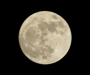 The Moon is very important for advanced life on Earth. It influences the tides, Earth's climate, and Earth's tilt.